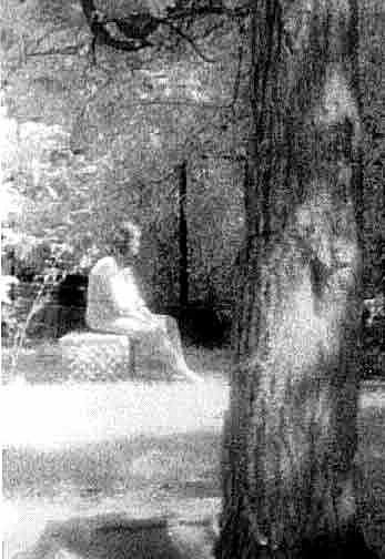 Photograph of the Madonna of Bachelor's Grove Cemetery
